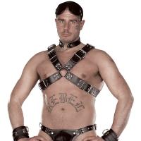 ledapol 8034 sm herren brustharness - gay leder harness