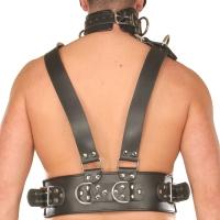 ledapol 8043 sm herren brustharness - gay leder harness